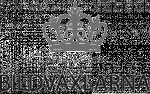 Bildväxlarna logo
